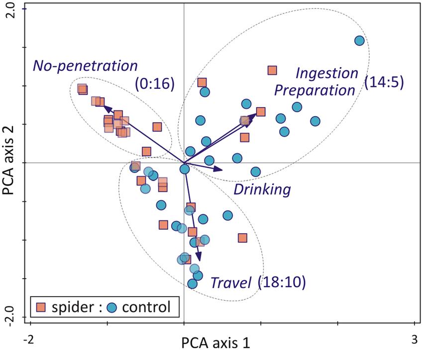principal-component-analysis-pca